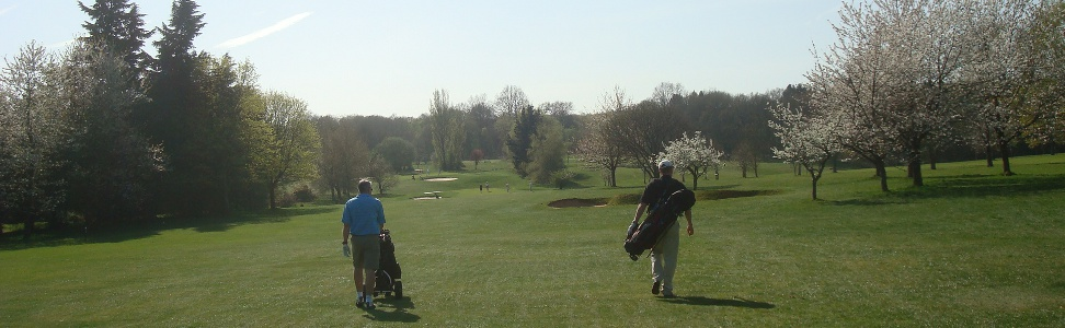 the-eighth-fairway